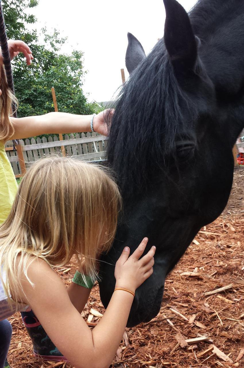Girl kisses her favorite horse at First Love Farm