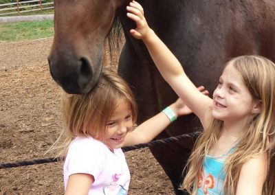 Two girls groom a horse