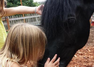 A girl kisses horse at summer camp