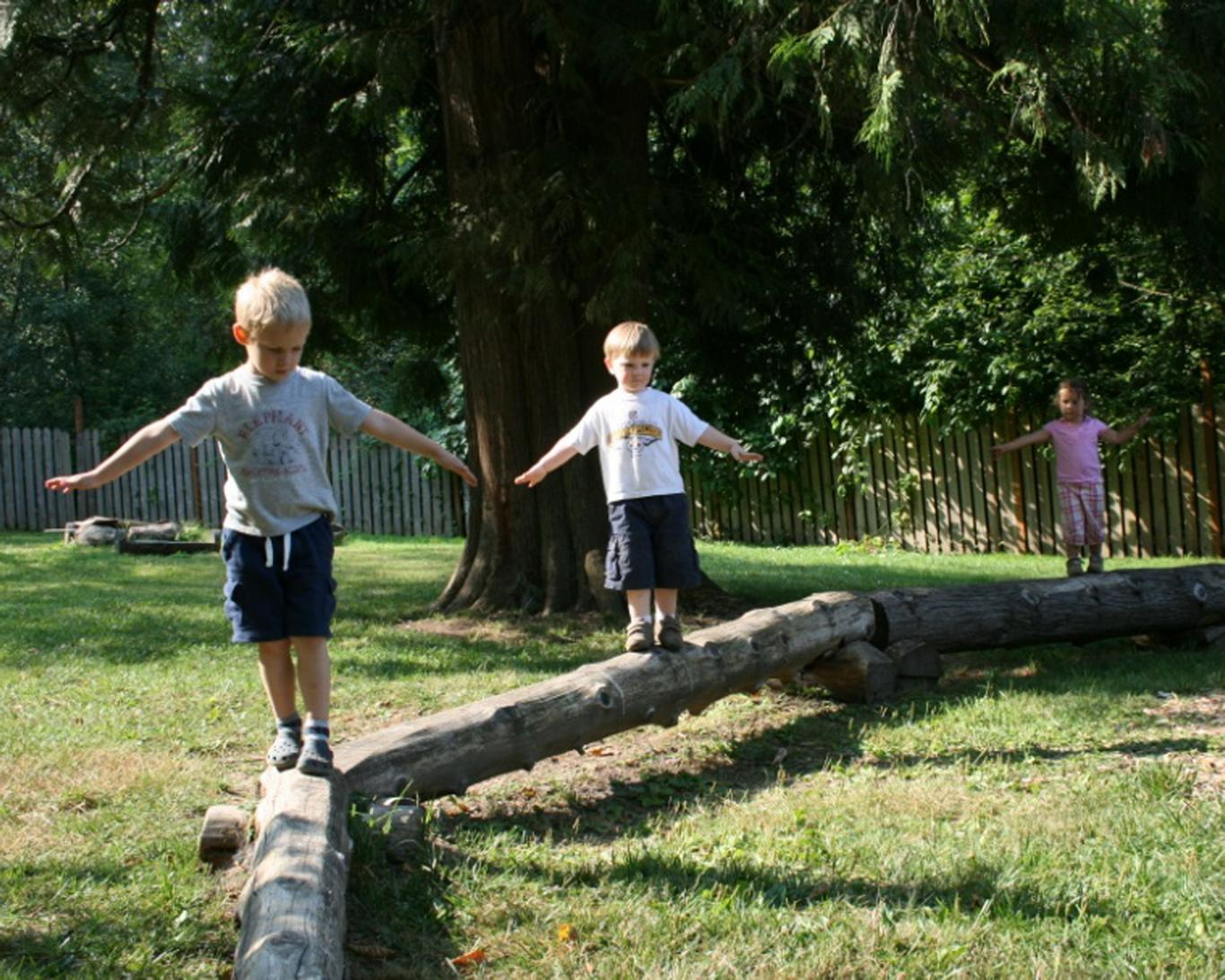 Children take a walk on a balance beam tree in the nature-filled backyard