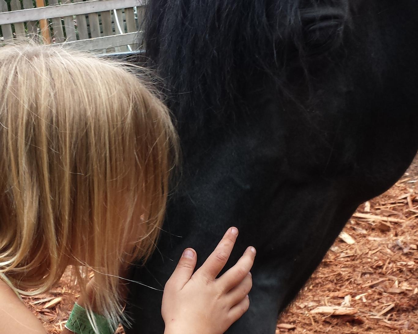 It's easy for a girl and horse to fall in love in the First Love Farm program