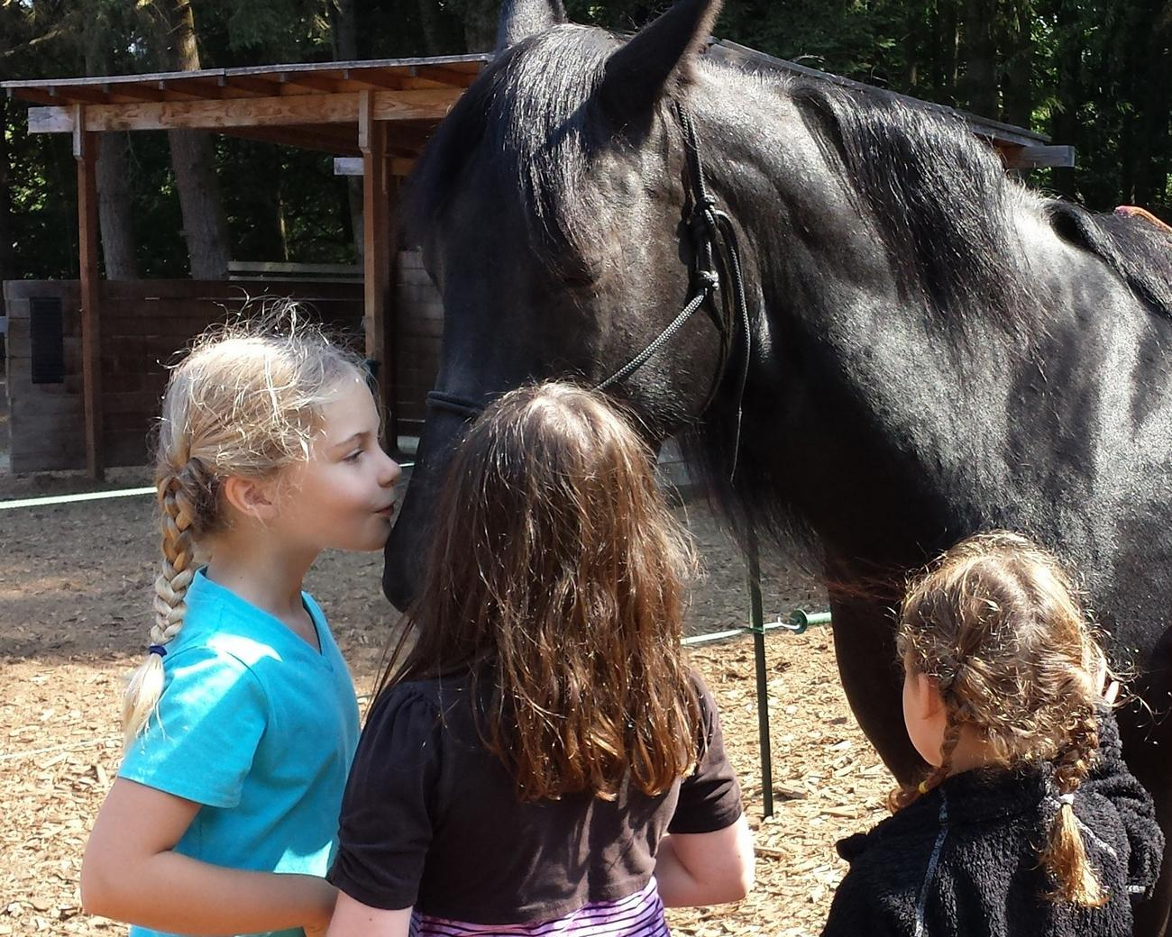Three girls learn how to listen to horses